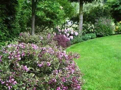 Gartenumrandung Pflanzen by Gro 223 E Freiwachsende Hecke Input Gesucht Mein Sch 246 Ner