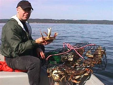 crabbing boats for sale in maryland bungalow for rent outer banks crabbing chesapeake bay