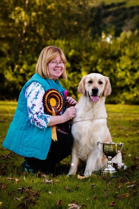golden retriever club of scotland grcs golden retriever club of scotland
