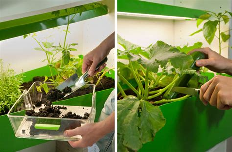 indoor garden  compost  ferber  dieckmann