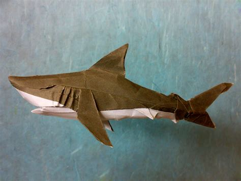 Origami Great White Shark - origami great white shark designed folded by me using