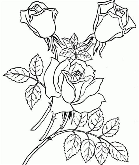 mewarnai gambar bunga nan indah warnagambar