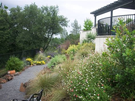northern california landscaping redding ca photo gallery landscaping network