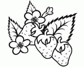 strawberry coloring page fresh strawberry coloring pages learn to coloring