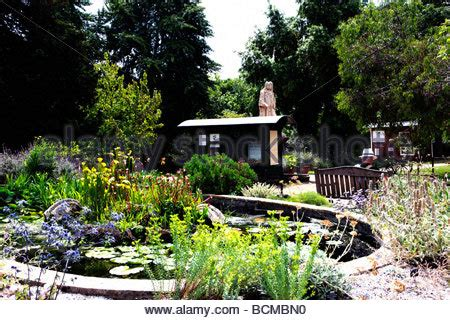 Chelsea Botanical Garden Chelsea Physic Garden S Oldest Botanic Garden And Statue Of Stock Photo Royalty Free