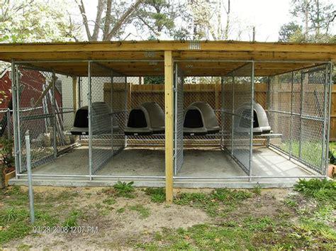 dog kennel backyard multiple dog kennel dog kennels pinterest dog dog