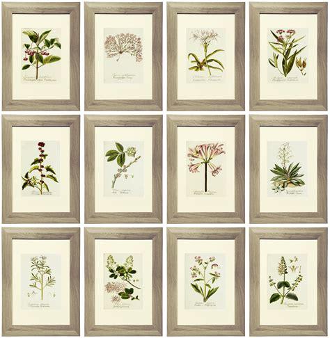 printable art gallery wall 21 free lavender botanical printables gallery wall