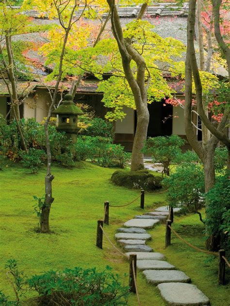 tranquil moss garden the uneven and meandering stepping stones stand out against a soft emerald