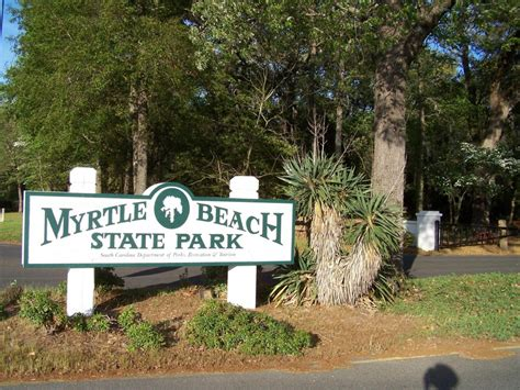 Myrtle Cgrounds With Cabins by Myrtle State Park Viking Oceanfront Motel