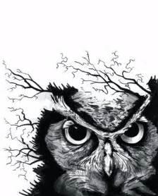 owl tattoo designs tattoo design pictures