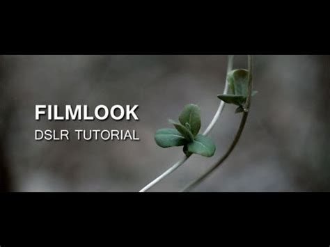 tutorial video dslr dslr tutorial how to get the filmlook what you re doing