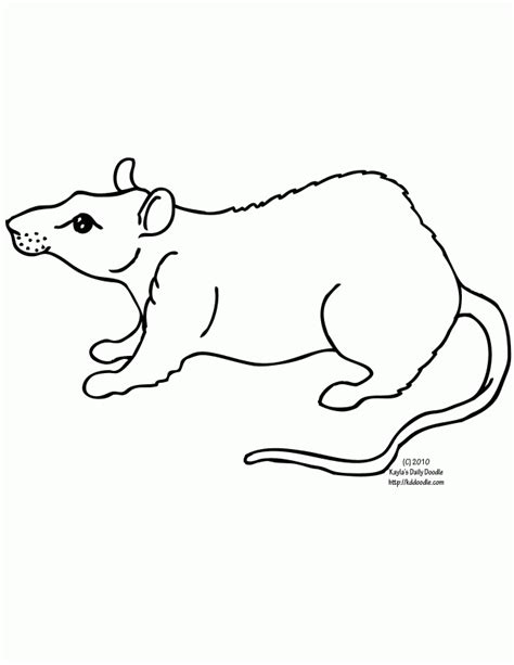 Rat Coloring Page Coloring Home Rat Coloring Pages