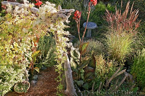 fall herb garden october the month to give thanks gardening on llm