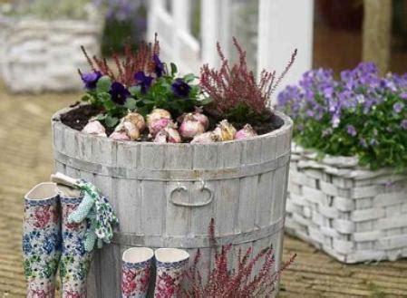 lada fioritura bloembollen in potten planten