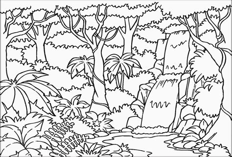 free coloring rainforest coloring sheets free coloring sheet