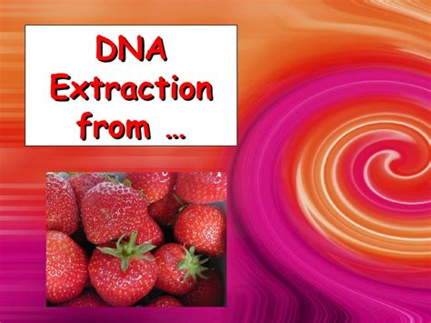 extraction of dna extraction of dna from cheek strawberry and