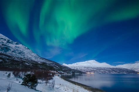 lights in northern lights in the majestic lyngenfjord