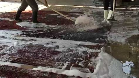 tarme tappeti lavaggio anti tarme di tappeti arte di tappeti it