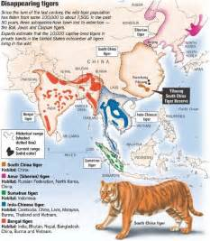 biodiversitywarriors south china tiger