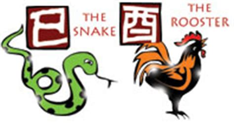 and rooster compatibility snake and rooster compatibility horoscope for a snake and rooster