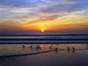 S Carolina Beaches Myrtle In South Carolina Overview Hits All