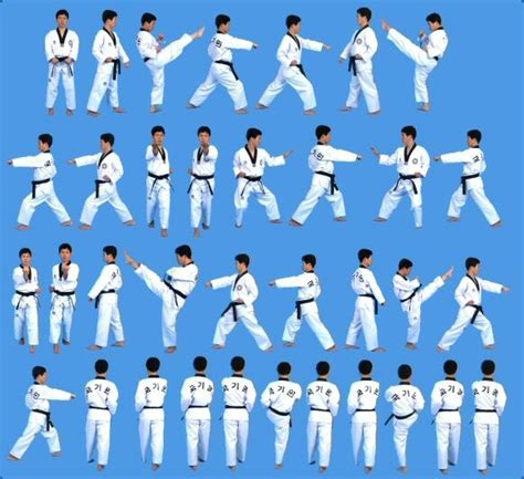 24 best images about poomsae taegeuk forms on