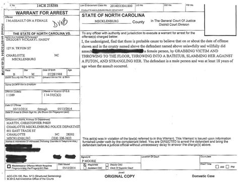 Carolina Arrest Warrant Search Nfl Cares About Paint Not Abuse The Daily Beast