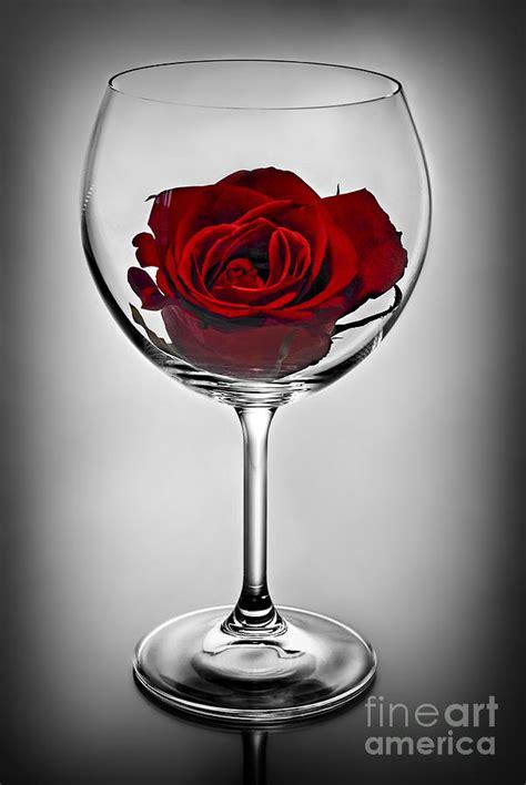 rose in glass rose wine quotes quotesgram