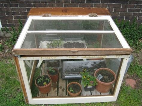 how do i build a greenhouse in my backyard 5 cheap and easy ways to build your own micro greenhouse