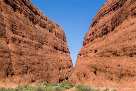 Termite Mounds Temperature Control