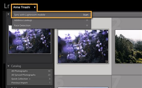 tutorial lightroom pc sync photos between lightroom on your computer and mobile