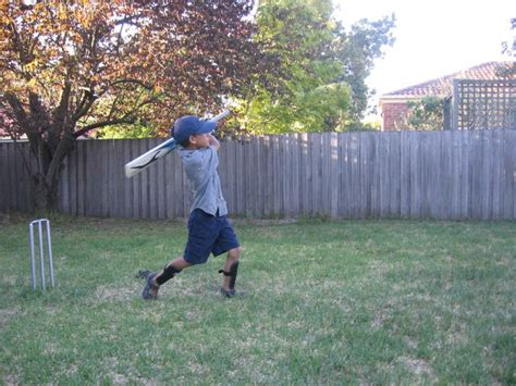 backyard cricket game the ultimate game of backyard cricket