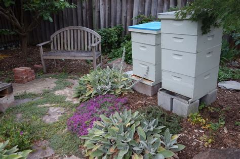 backyard bees 40 diy backyard ideas on a small budget