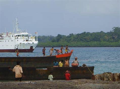 Was Tun Gegen Maulwürfe 2793 by Auf Havelock Island