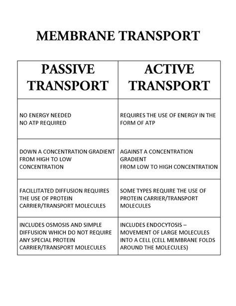 passive and active transport venn diagram best 25 passive transport ideas on cell