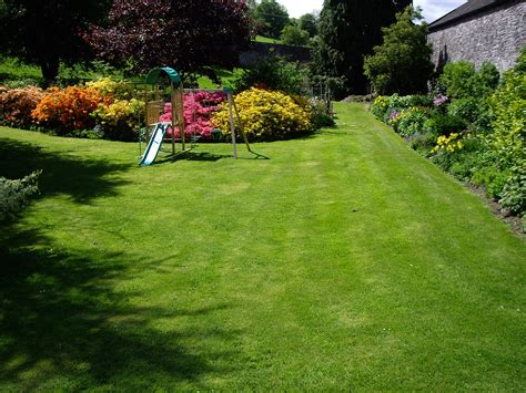 lawn care annual lawn care schedule grass maintenance through the year
