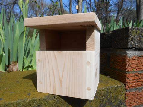 raw cedar carolina wren nesting box birdhouse
