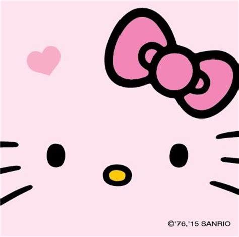 imagenes de hello kitty la cara m 225 s de 1000 im 225 genes sobre hello kitty en pinterest