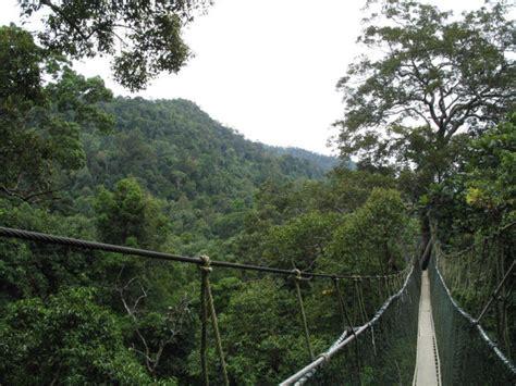 Team Negara 3d taman negara 3d 2n tours nature wildlife malaysia