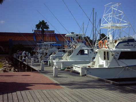 charter boat aruba aruba charters the hull truth boating and fishing forum
