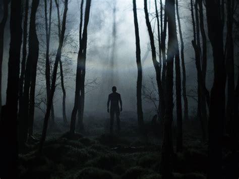 film horor forest 10 great forest horror films bfi