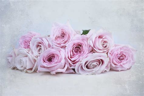 50 Shades Of Darker Flower Bouquet Perfect Pink Roses O Hara And Avalanche The Smell Of