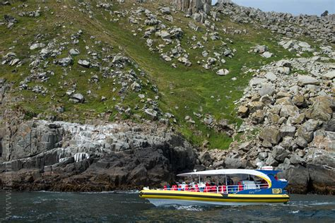 tasmania boat cruise tasmania tasman island boat cruise leanne cole the