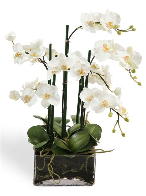 faux white orchid centerpiece in glass fresh arrivals