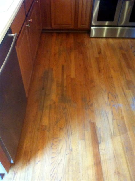 eagle hardwood floors eagle carpet care wood floor refinishing