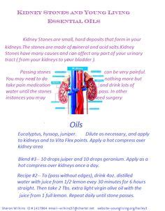 Essential Oils To Detox Kidneys by D Epices Stones And Kidney Stones On