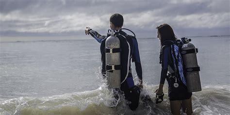 halcyon dive home halcyon dive systems