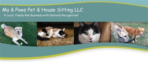 house sitting rates with dogs house sitting rates with dogs 28 images rates and services k9 second line your