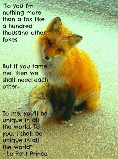 be like the fox quot to you i m nothing more than a fox like a hundred
