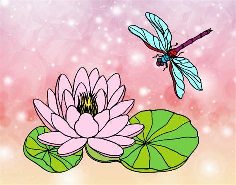 disegno fiori di loto disegno fiore di loto colorato da utente non registrato il